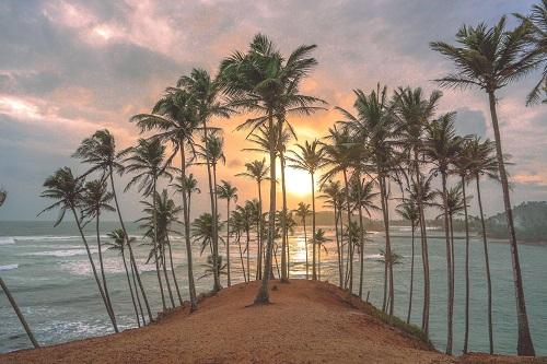 Circuit Sri Lanka 8 Jours